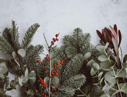 Im Advent: Kranzbinden macht Freude